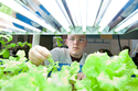 Male BioScience Students looks at lettuce growing indoors
